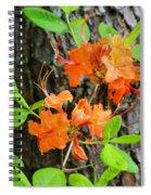 Flame Azaleas Spiral Notebook