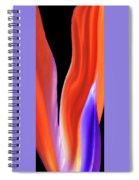Flame - Bird Of Paradise   Spiral Notebook