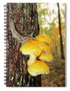Flame Cap Mantle Slug Spiral Notebook
