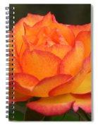 Flame Spiral Notebook