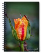 Flame Rose Spiral Notebook