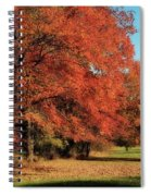 Flame Trees Spiral Notebook