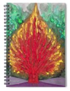 Flame Spiral Notebook