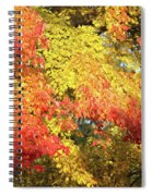 Flaming Autumn Leaves Art Spiral Notebook