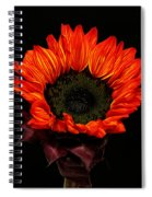Flaming Flower Spiral Notebook