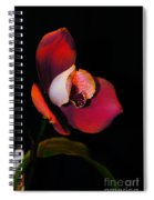 Flaming Orchid Spiral Notebook