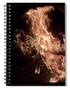Flaming Pegasus Spiral Notebook
