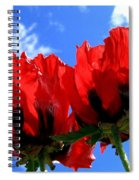 Flaming Skies Spiral Notebook