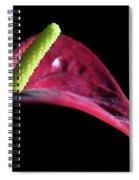 Flamingo 1 Spiral Notebook