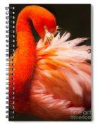 Flamingo Fluff Spiral Notebook