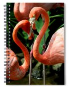 Flamingo Heart Spiral Notebook