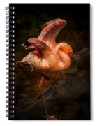 Flamingo In Darkness Spiral Notebook