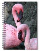 Flamingo Love Birds Spiral Notebook