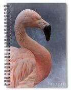Flamingo Profile Spiral Notebook