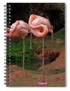 Flamingo See Flamingo Do Spiral Notebook