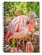 Flamingo2 Spiral Notebook