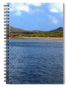 Flamingo's Home Spiral Notebook