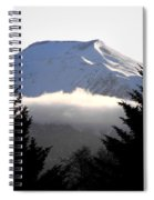 Flat Top Floating Through The Trees Spiral Notebook