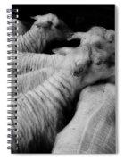 Fleeced Spiral Notebook