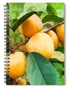 Fleshy Yellow Plums On The Branch Spiral Notebook