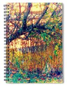 Fletcher Lake  14 Spiral Notebook