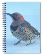 Flicker Alert Spiral Notebook