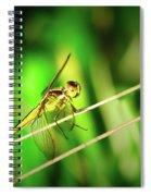 Flight Clearance Spiral Notebook