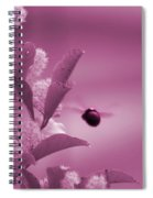 Flight Of Princess Bumble Bee Spiral Notebook