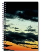 Flight Of The Geese Spiral Notebook