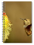 Flight Of The Hummer Spiral Notebook