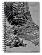 Flight Of The Osprey Bw Spiral Notebook