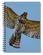 Flight Of The Red Shouldered Hawk Spiral Notebook