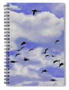 Flight Over Lake Spiral Notebook