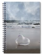 Float Bounce And Roll Spiral Notebook