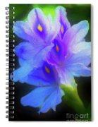 Floating Amazement Spiral Notebook