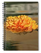 Floating Beauty - Hot Orange Chrysanthemum Blossom In A Silky Fountain Spiral Notebook