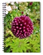 Floating Flower Buds Orb Spiral Notebook