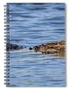 Floating Gator Spiral Notebook