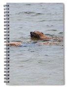 Floating In The Sea Spiral Notebook