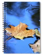 Floating On The Reflected Sky Spiral Notebook
