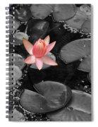 Floating Pink Spiral Notebook