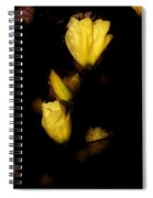 Floating Yellow Magnolia Blossoms Spiral Notebook