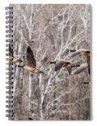 Flock Of Geese Spiral Notebook