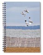 Flock Of Gulls Spiral Notebook