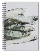 Flock Of Lures Spiral Notebook