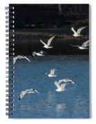 Flock Of Them Spiral Notebook