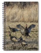 Flock Of Wild Turkeys Spiral Notebook