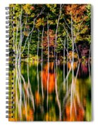 Flood Spiral Notebook