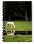 Flooded Field In May Spiral Notebook