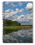 Flooded Low Country Rice Field Spiral Notebook